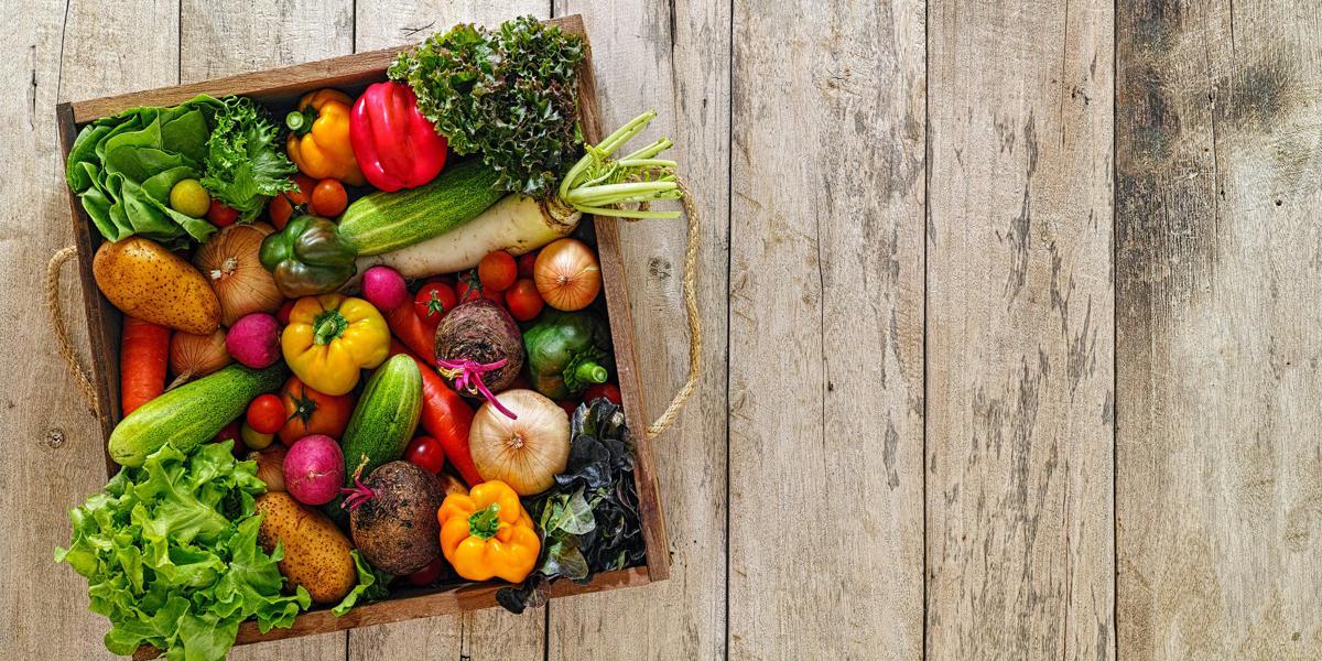Makanan Ini Sangat Bagus Mencegah Payudara Kendur - MOOIMOM